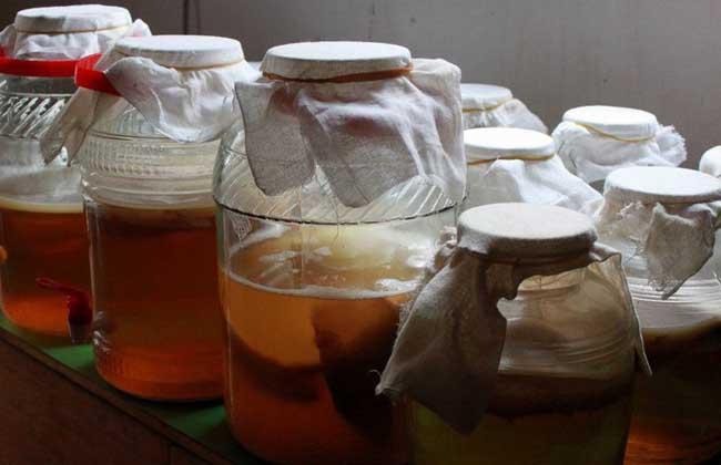 红茶菌的功效与作用