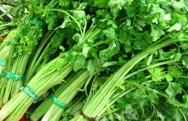 吃什么蔬菜能减肥?
