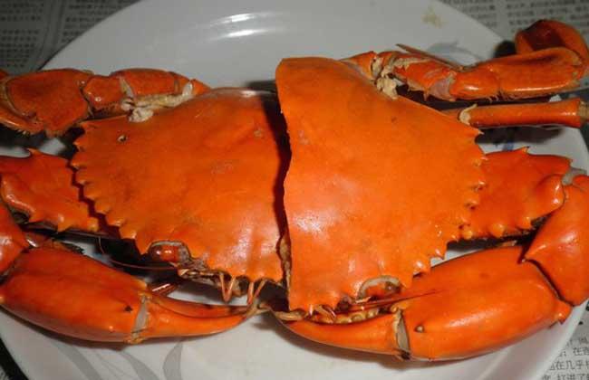 锯缘青蟹多少钱一斤?
