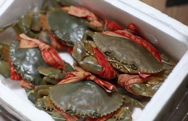 青蟹和大闸蟹哪个好吃?