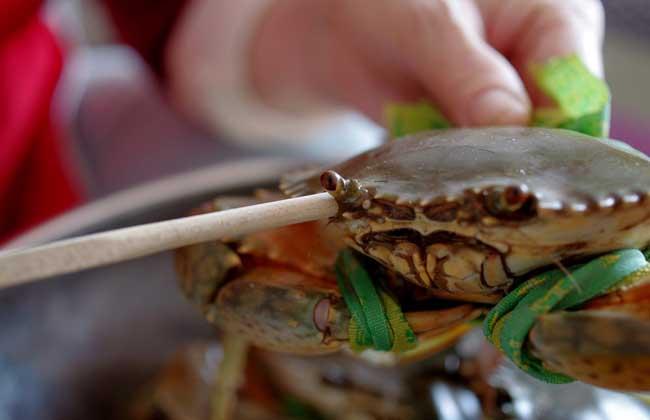 青蟹是河蟹还是海蟹?