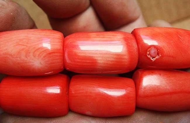 红珊瑚多少钱一克