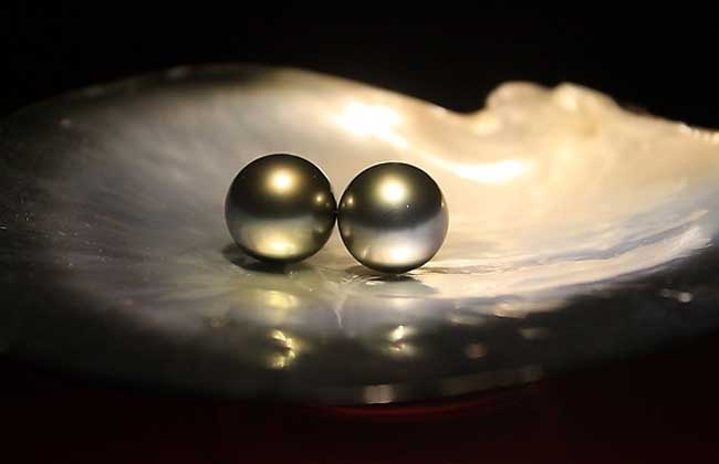 珍珠是怎么形成的