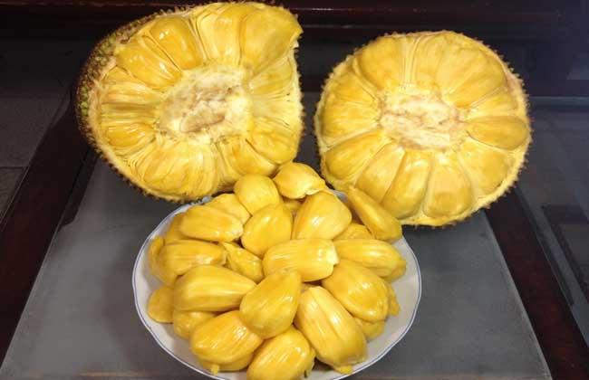 菠萝蜜多少钱一斤?
