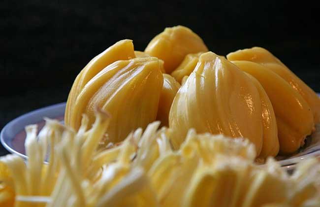 菠萝蜜不能和什么同吃?
