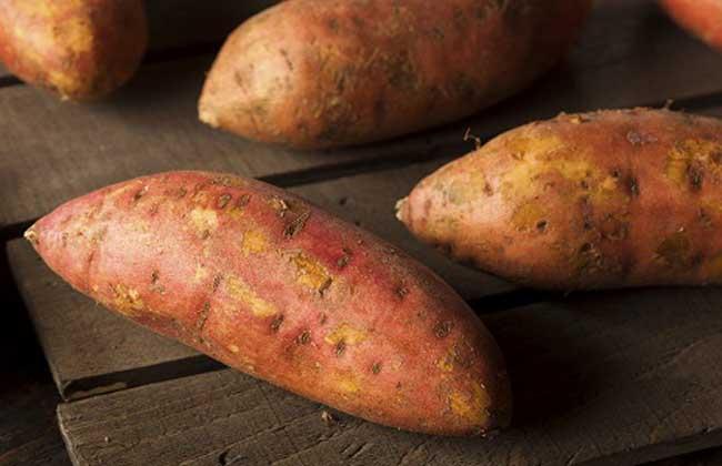 红薯和山药能一起吃吗