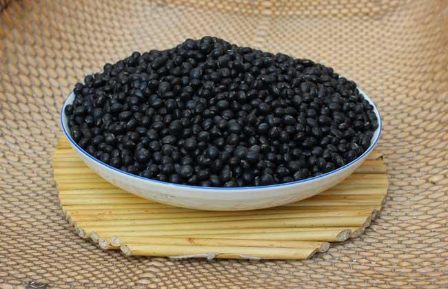 黑豆多少钱一斤
