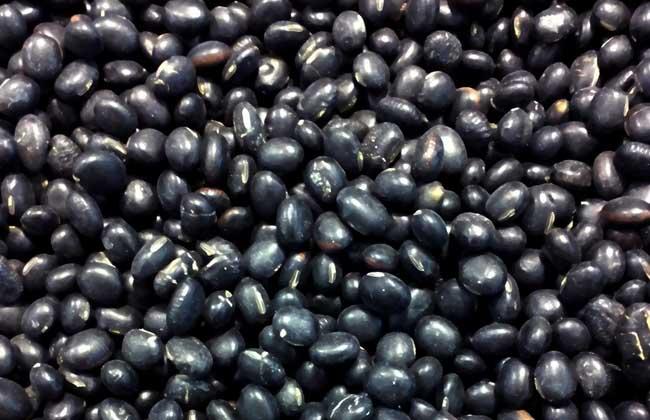 醋泡黑豆的功效与作用