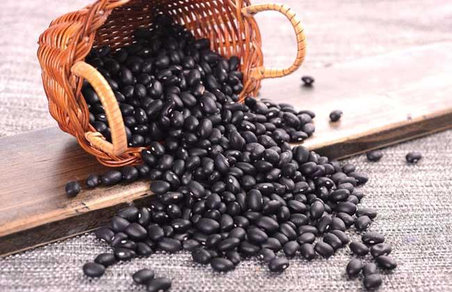 醋泡黑豆减肥小常识