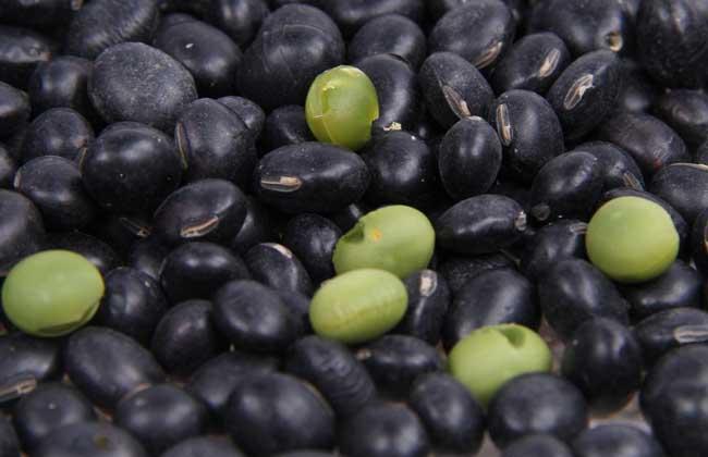 醋泡黑豆怎么吃最好?
