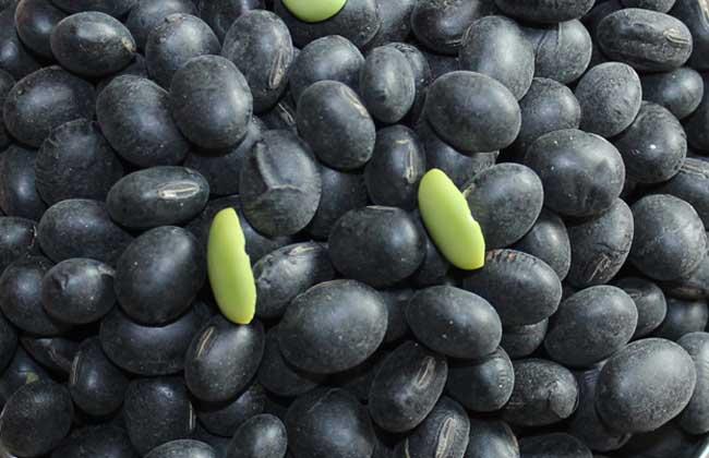 醋泡黑豆什么时候吃最好?