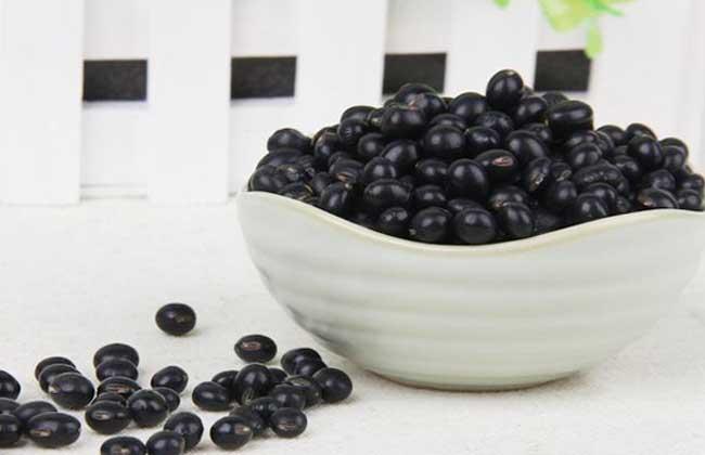 黑豆怎么吃促排卵