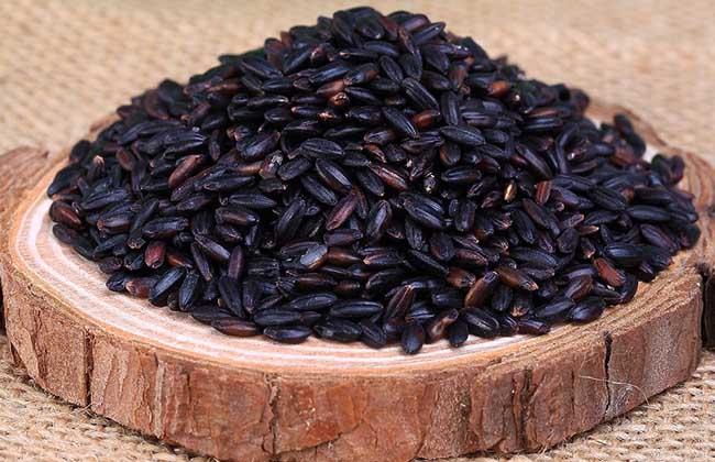 黑米的营养价值