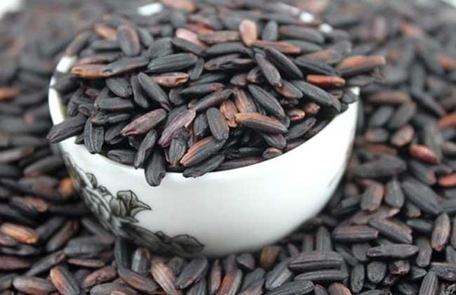 黑米减肥法有效吗?