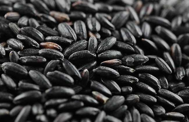 吃黑米有什么好处?