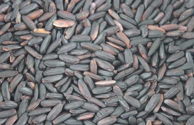 黑米吃多了会怎么样