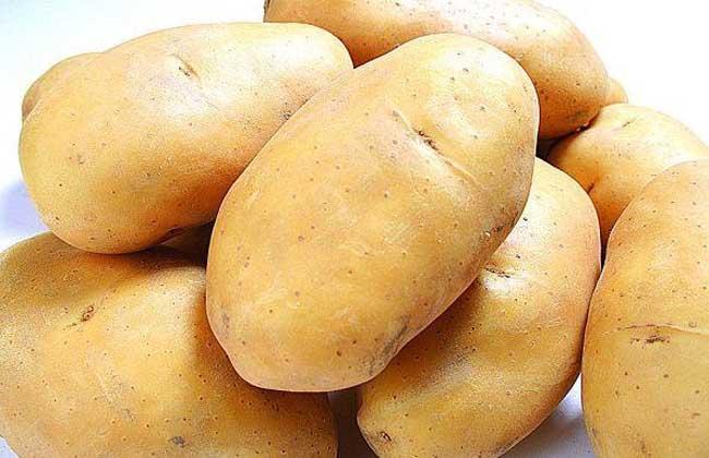 马铃薯发芽能吃吗