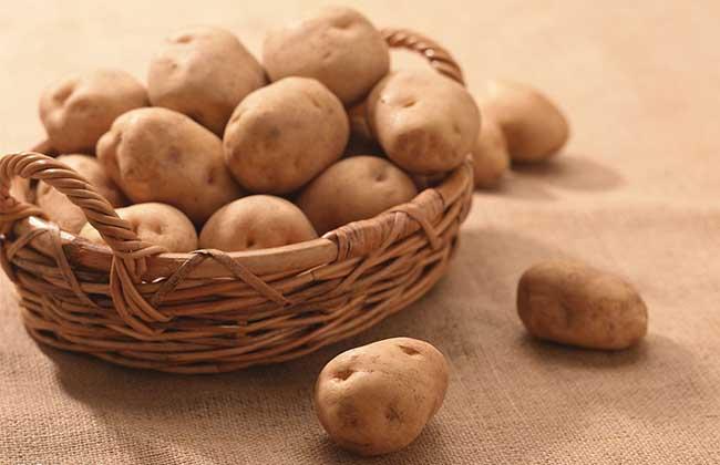 土豆怎么做好吃又减肥