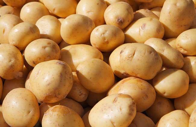 土豆能去痘印吗