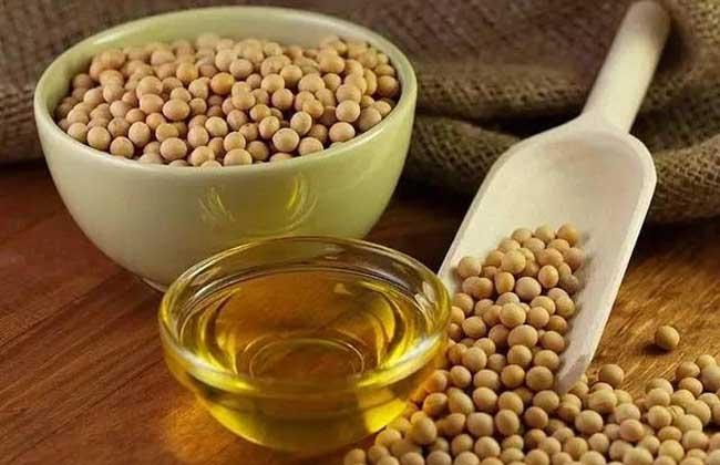大豆油的功效与作用