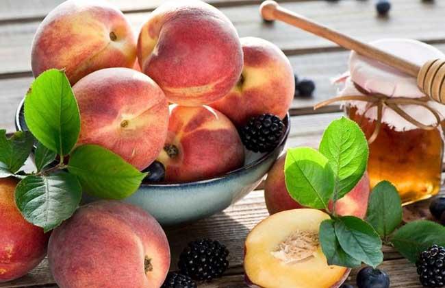 水蜜桃种植技术