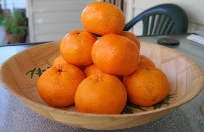 陈皮是橘子皮吗