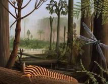 史前巨型蜻蜓有多大?