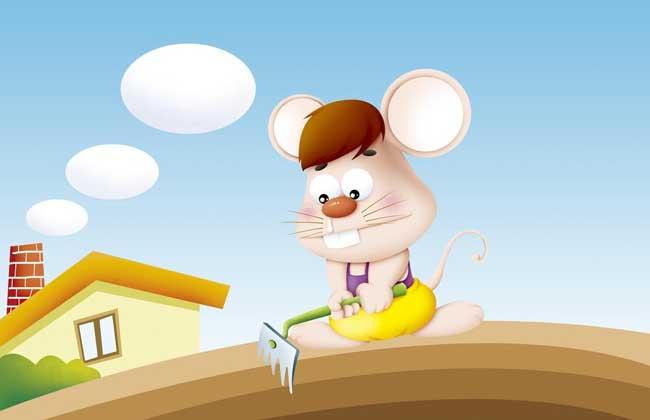属鼠的和什么属相最配?
