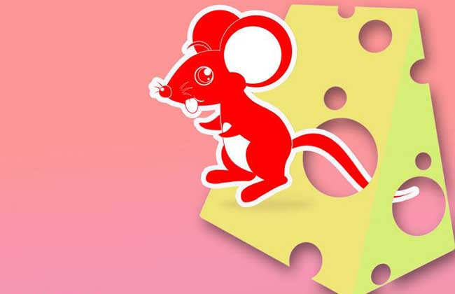 属鼠人有哪些性格特点?