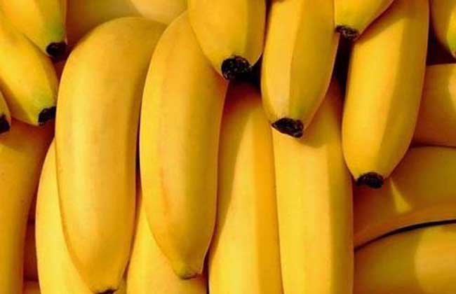 梦见吃香蕉