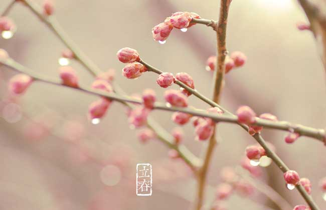 立春是几月几日