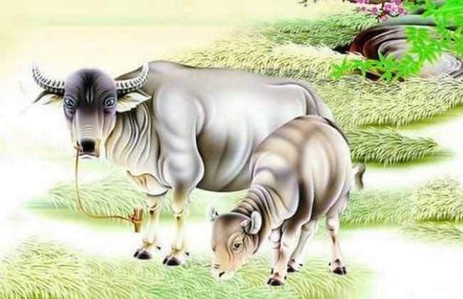 属牛的和什么属相最配