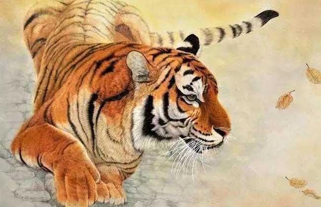 属虎的几月出生最好