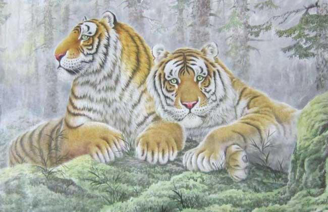 属虎的人佩戴什么好?