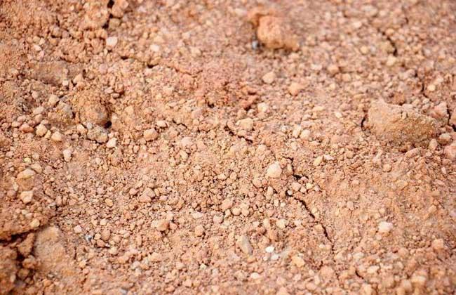 沙中土命是什么意思?