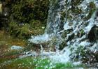 泉中水命是什么意思?