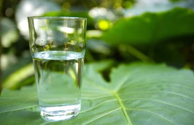 喝水减肥法的时间表