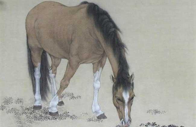 属马的和什么属相最配