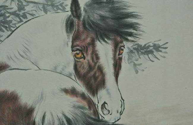 属马的人几月出生最好?