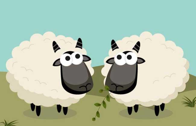 2017年属羊的人多大?
