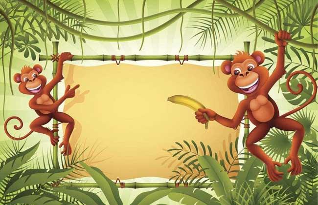 属猴的今年多大