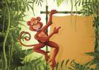 2017年属猴的人多大?