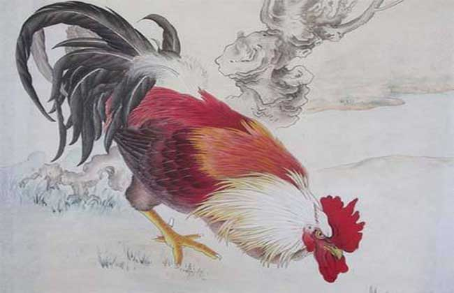 属鸡的人几月出生最好?