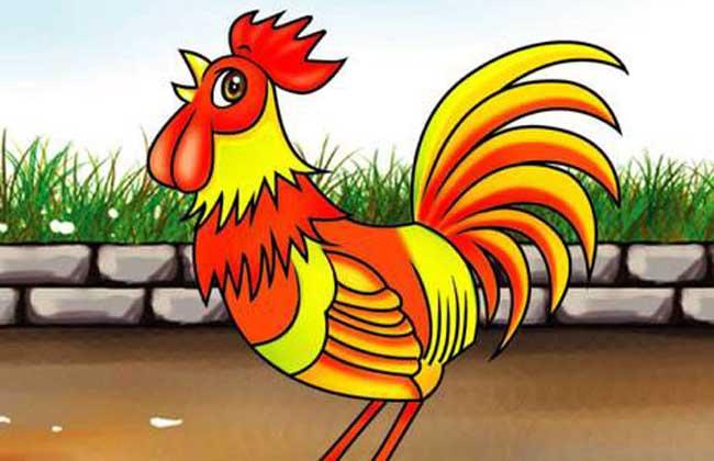 属鸡的几月出生最好