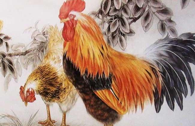 属鸡的今年多大