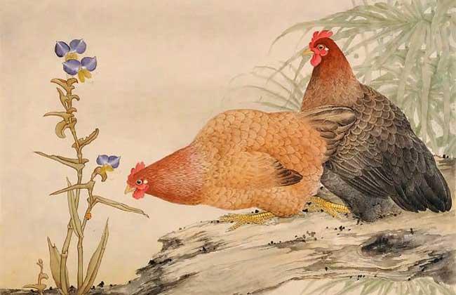 生肖属鸡的年份有哪些?