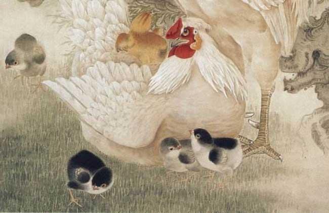 属鸡人的婚姻与命运