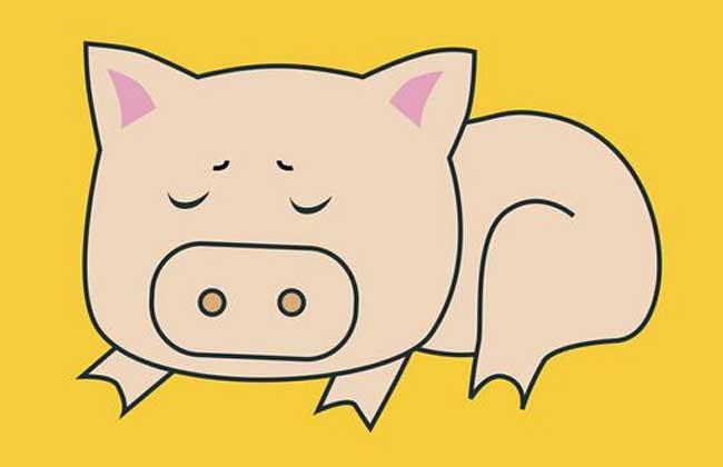 属猪的人几月出生最好?