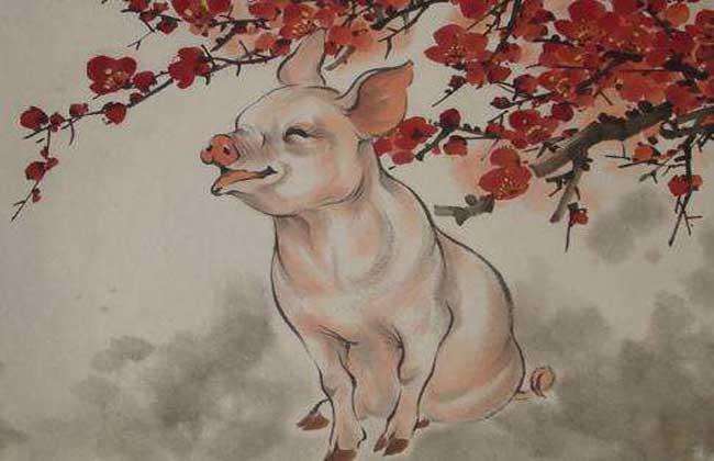 属猪的和什么属相最配