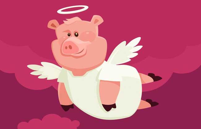 属猪的人佩戴什么好?